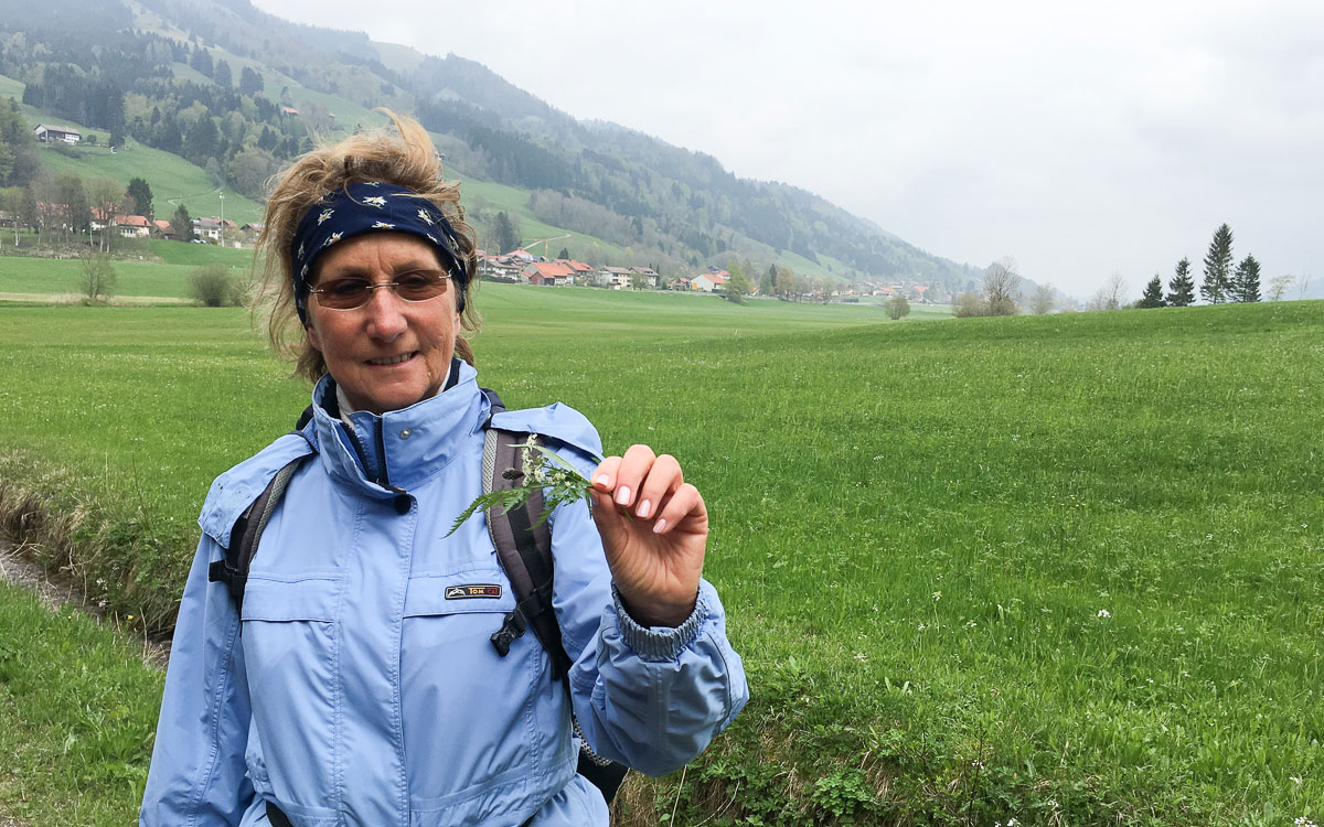 Allgäu Oberstaufen Kräuterwanderung