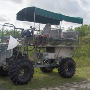 Everglades Nationalpark Swamp Buggy Tour