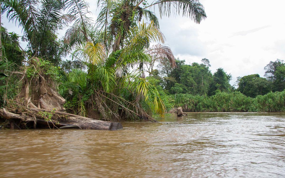 Tortuguero Nationalpark mit Boot erfolgt Anreise