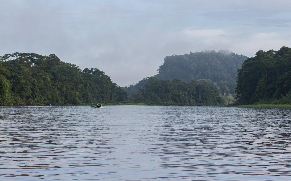 Tortuguero Nationalpark Bootstouren