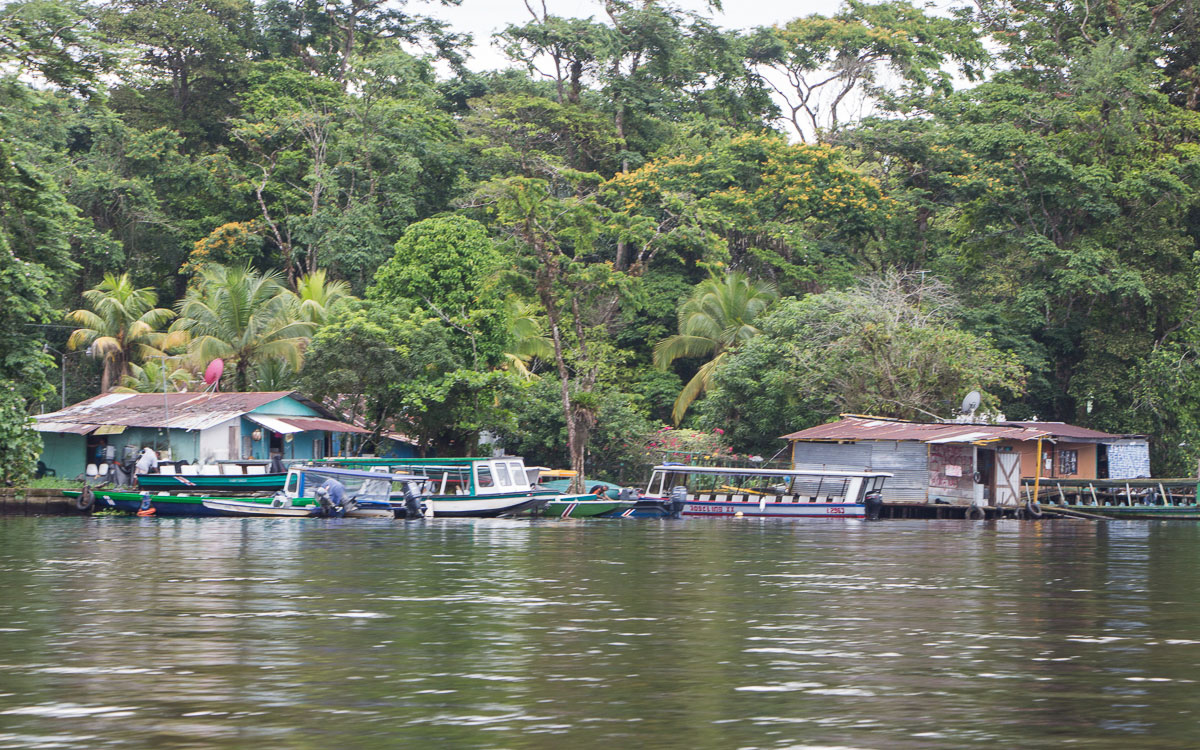 Tortuguero Nationalpark Dorf Hauptstadt