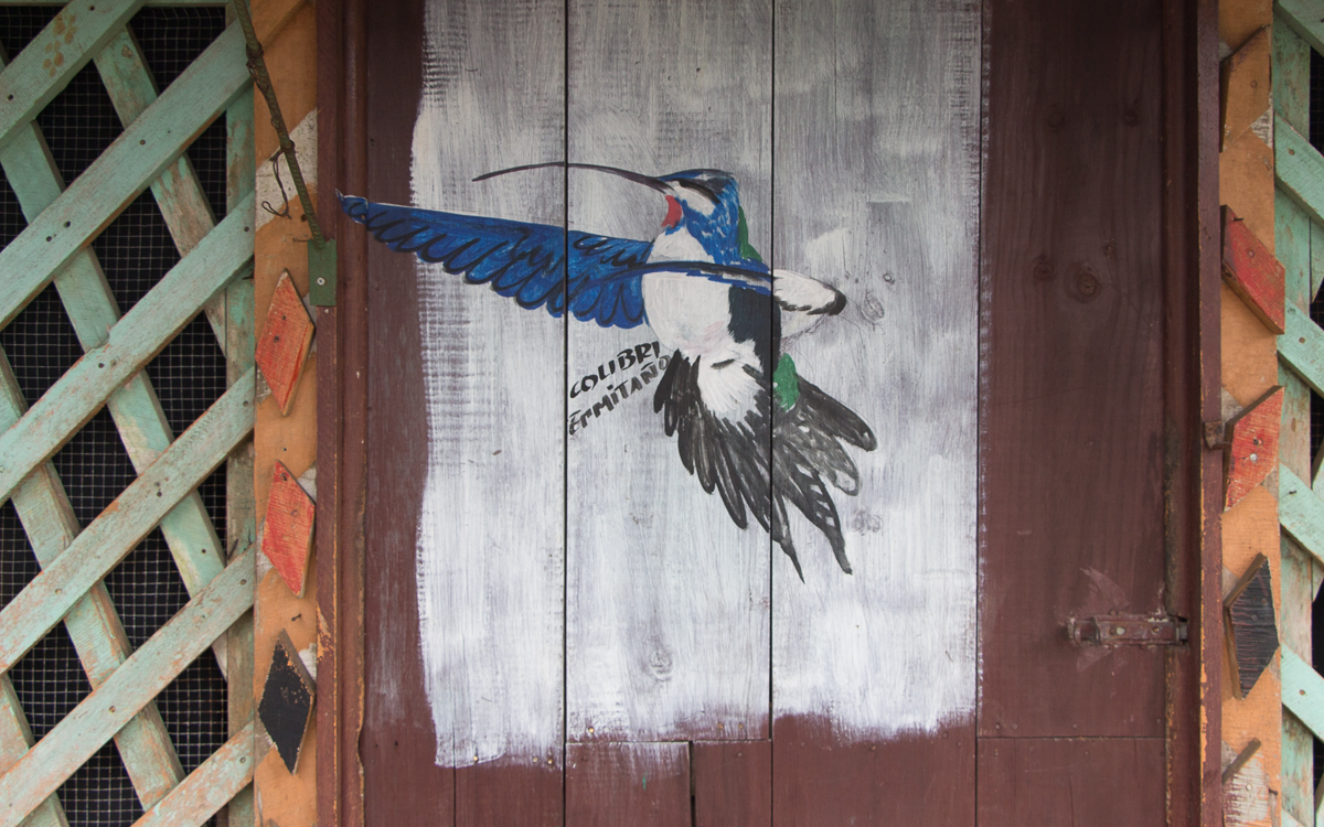 Tortuguero Nationalpark Street Art