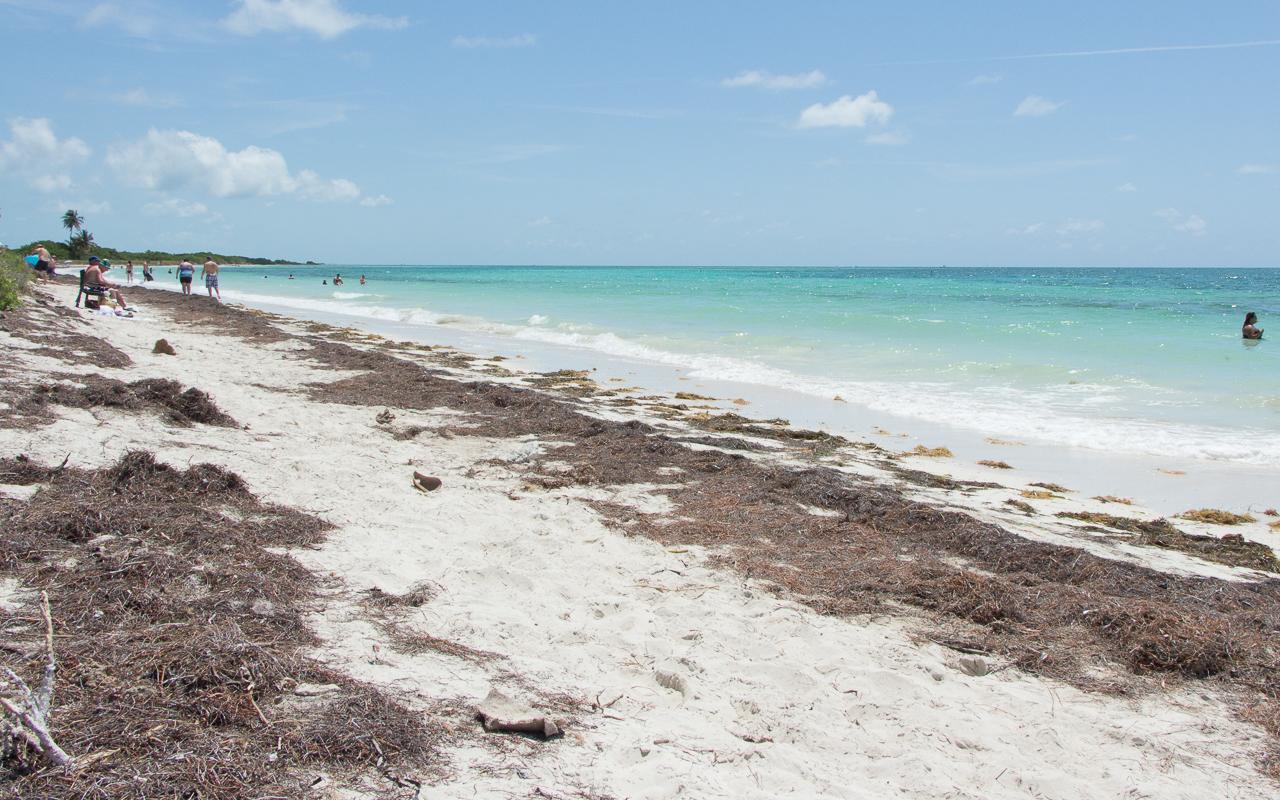 florida-keys-bahia-honda-sandspur-beach
