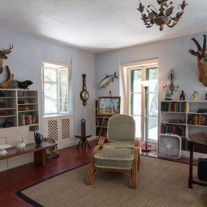 Key West Sehenswürdigkeiten Hemingway Haus besuchen