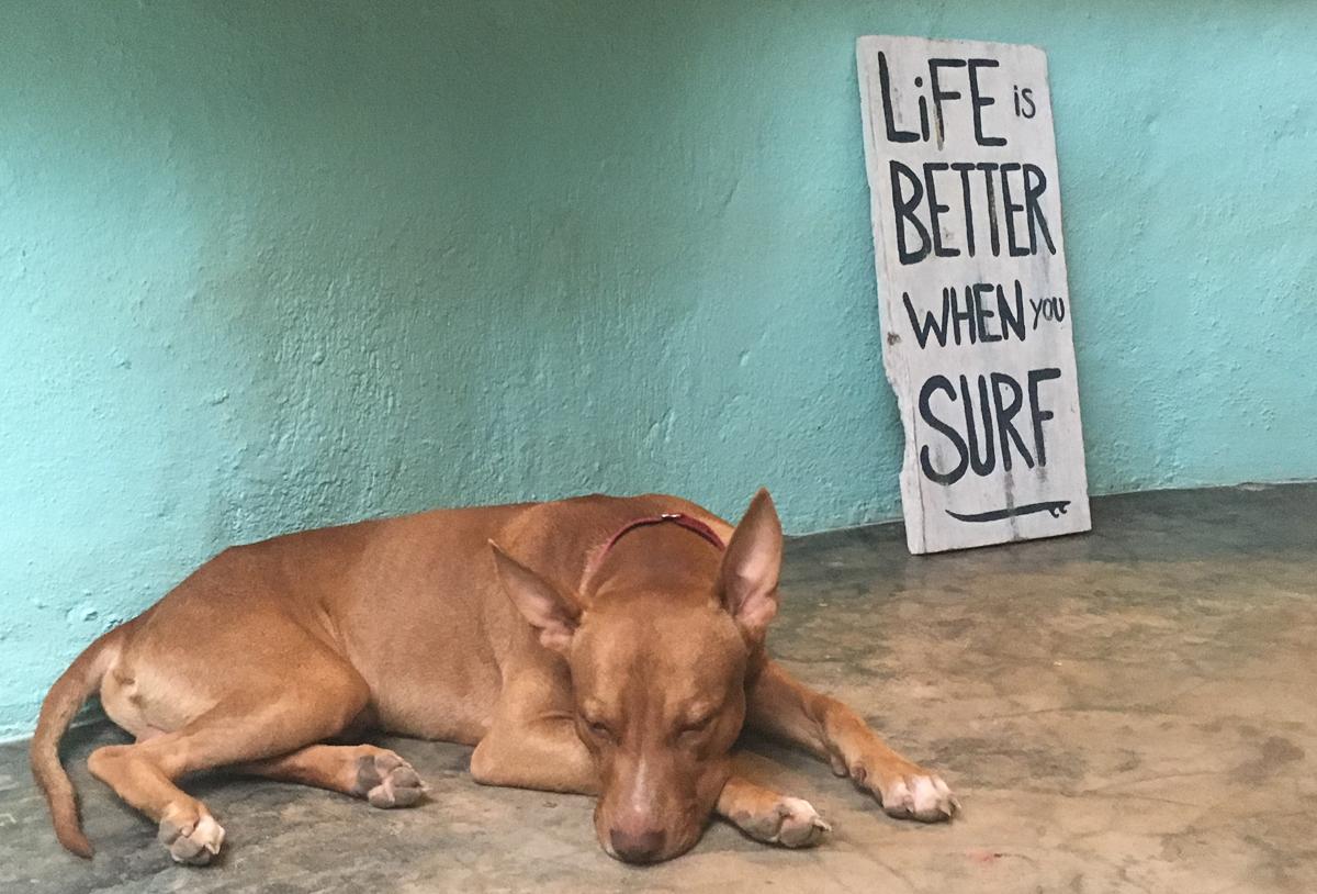 santa-teresa-costa-rica-surf