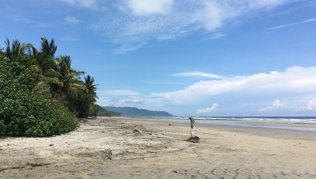Die beste Reisezeit für Costa Rica