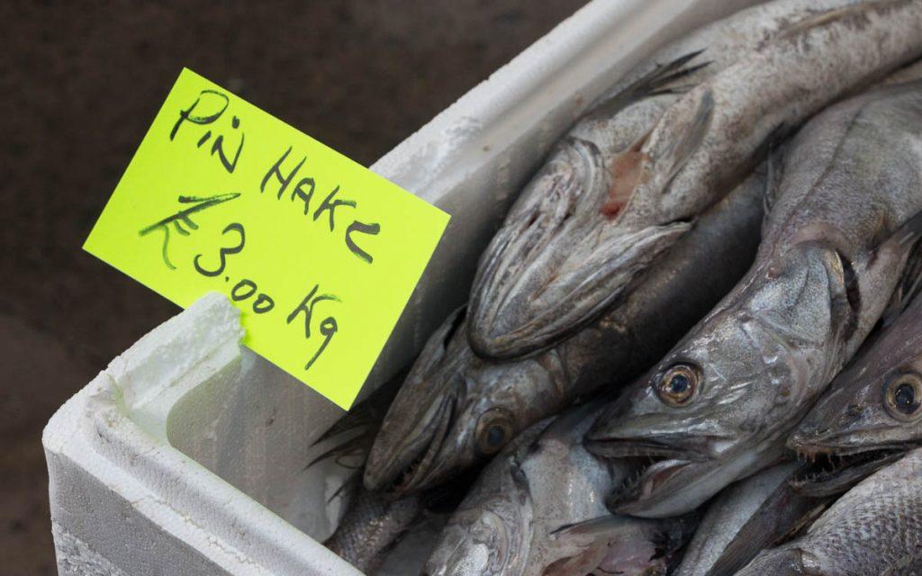 St. Georges Market - Belfast Sehenswüridigkeiten Fisch