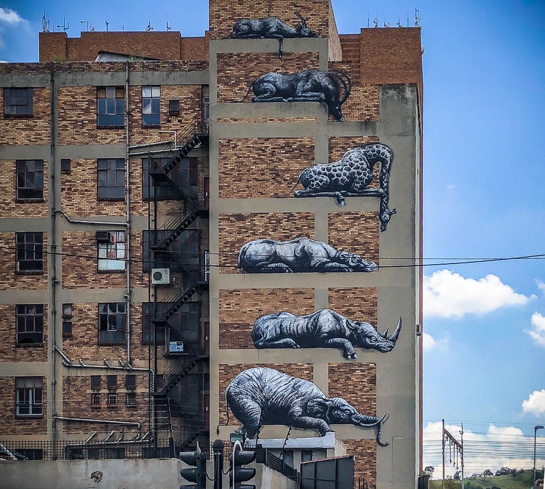 ROA Street Art Johannesburg