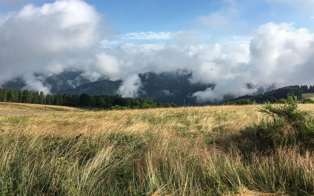 Ausblick vom Grubhof im Schwarzwald