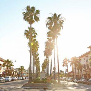 Sarasota Sehenswürdigkeiten: Venice Beach