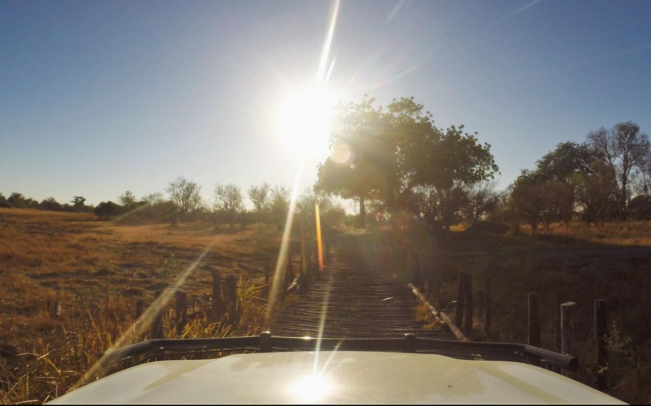 autofahren-botswana-bruecken-moremi