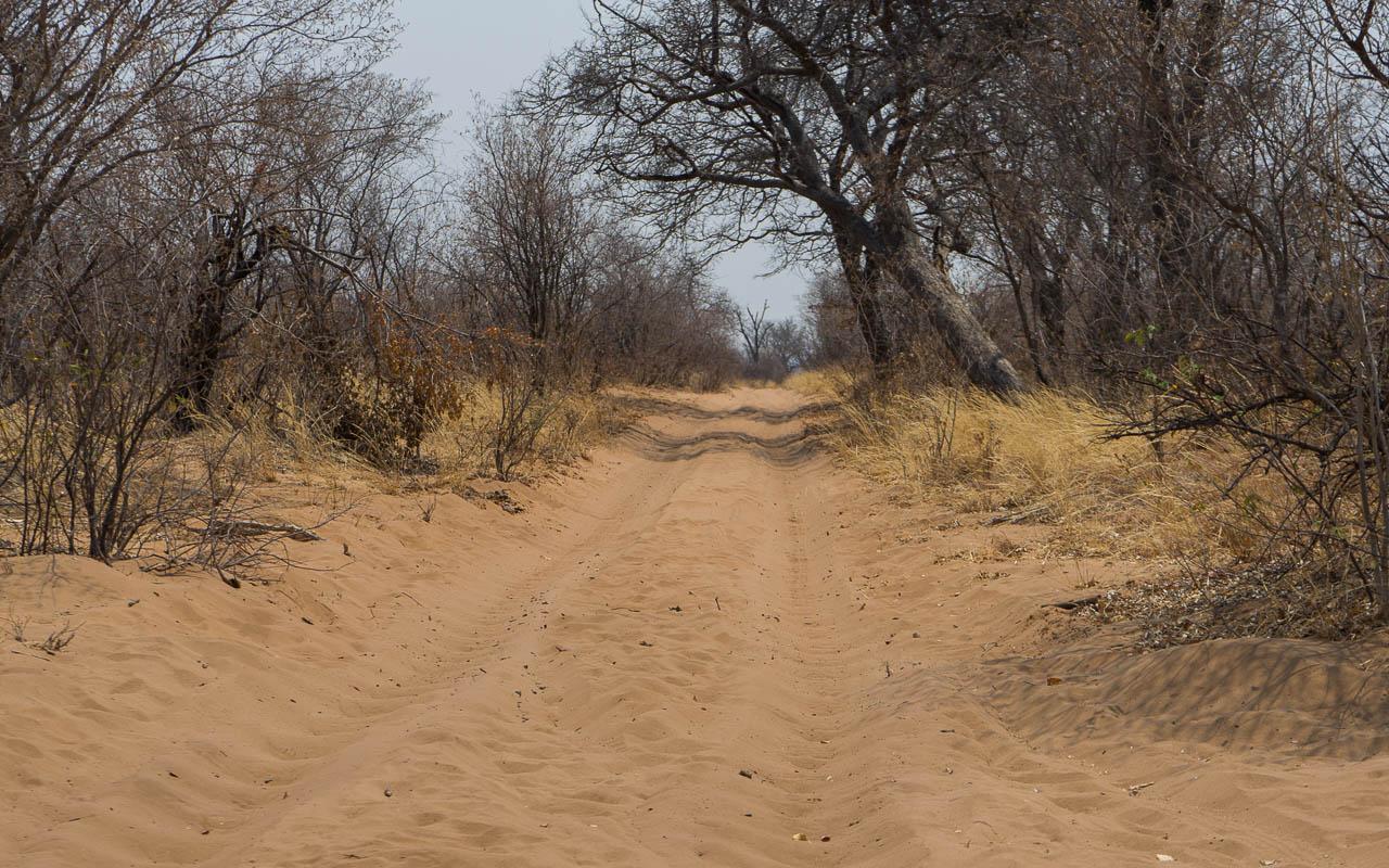 Autofahren Botswana Tipps Savuti Tiefsand