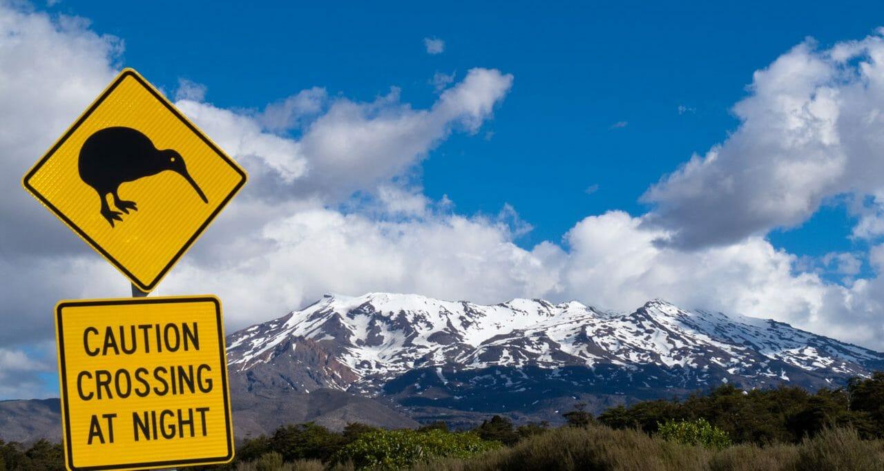 Neuseeland: Die schönsten Reiseziele und Reiseberichte