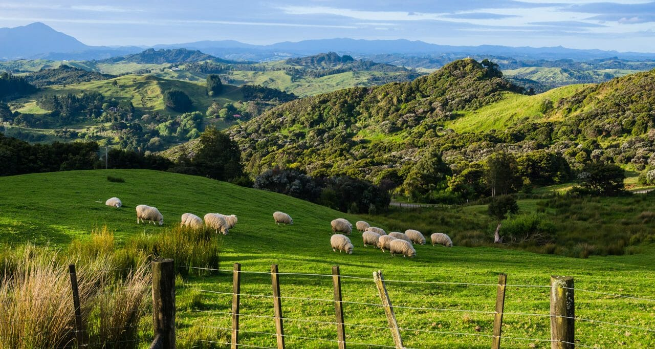 Reisetipps: Neuseeland Reise planen