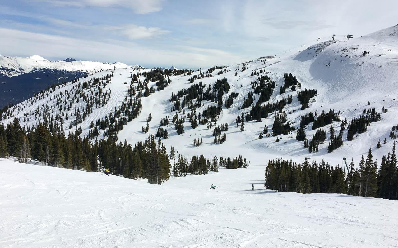 Skifahren Kanada Jasper Marmot Basin
