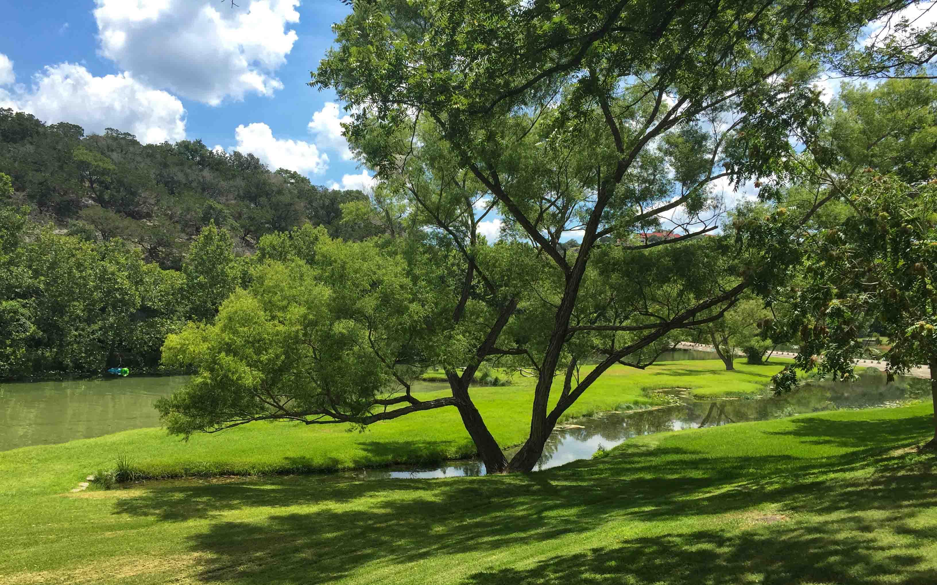 Austin Texas Tipps Guadalope River Baum