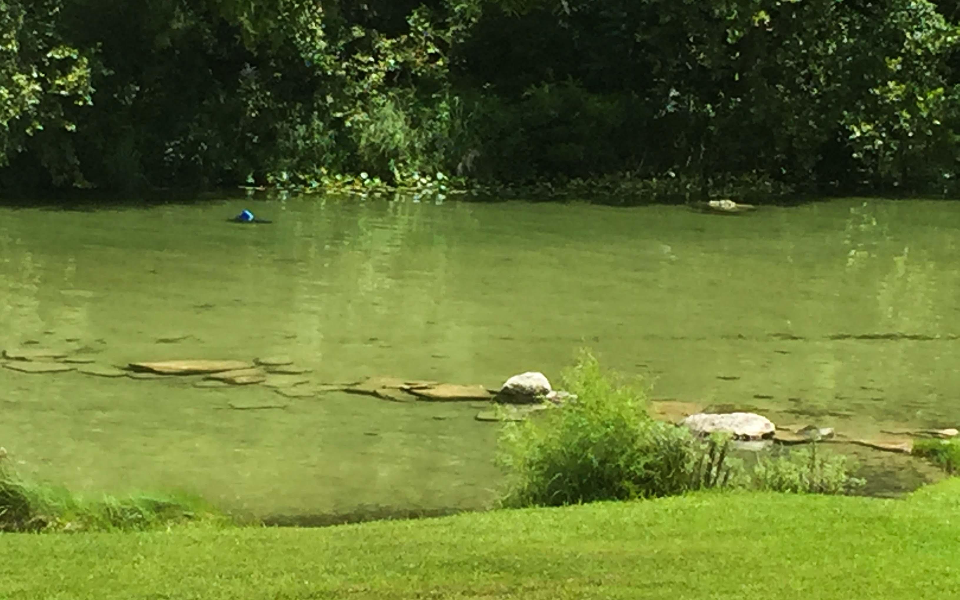 Austin Texas Tipps Guadalope River Fluss