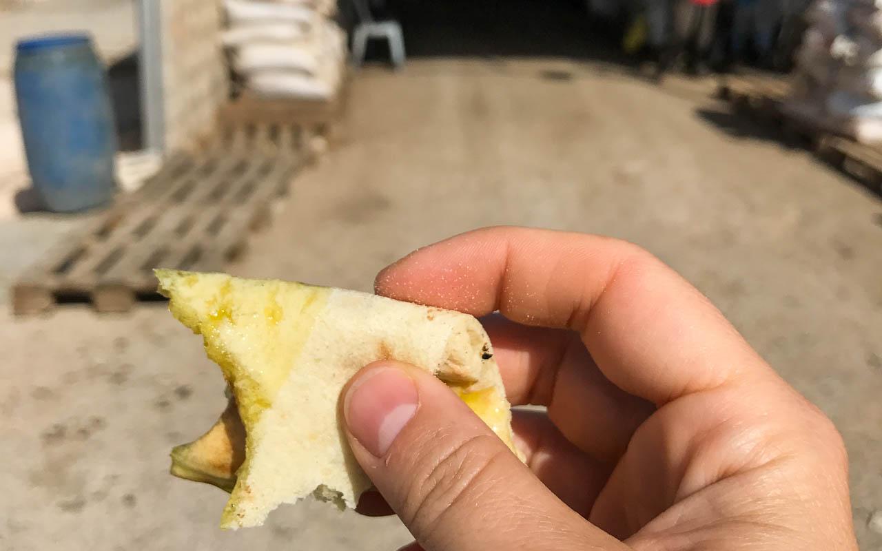 reisebericht-jordanien-rundreise-ajloun-olivenoel-brot
