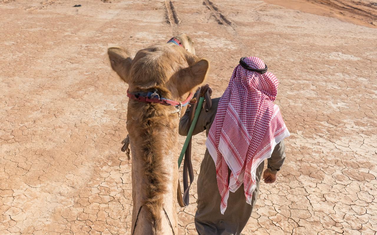 wadi-rum-kameltour