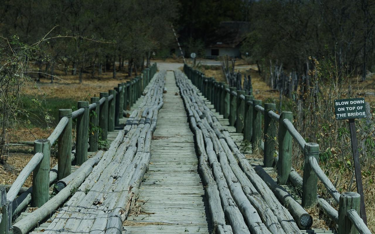 botswana-reisebericht-moremi-bridge