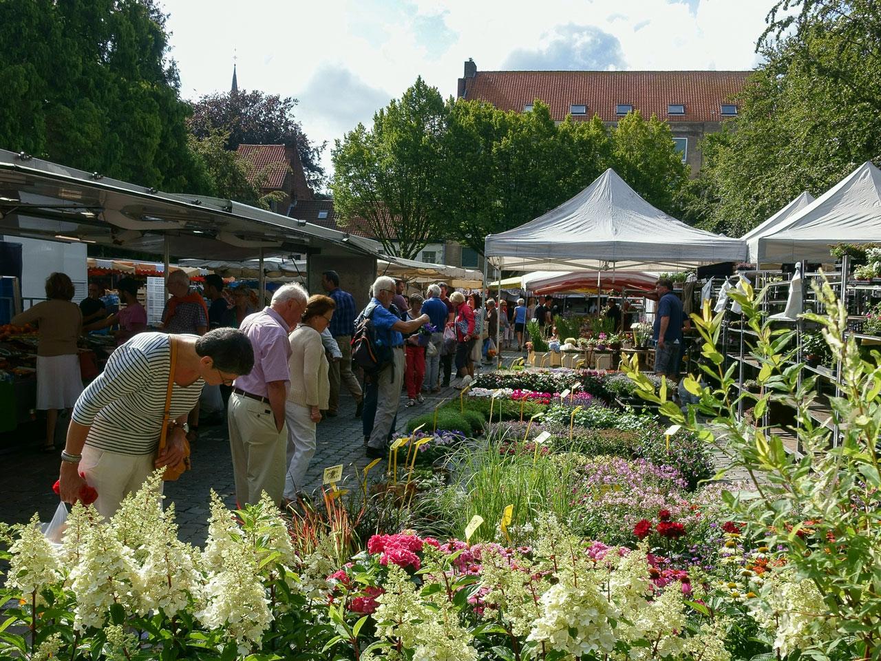 bruegge-tipps-markt-besuchen