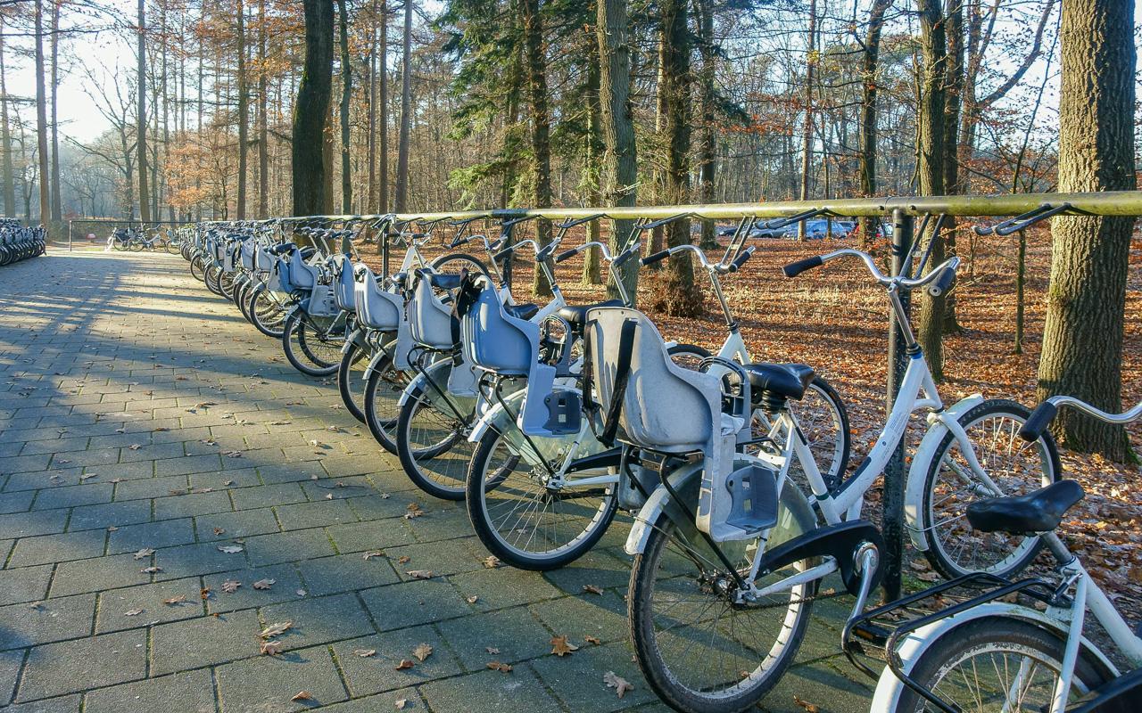 gelderland-de-hoge veluwe-fahrrad