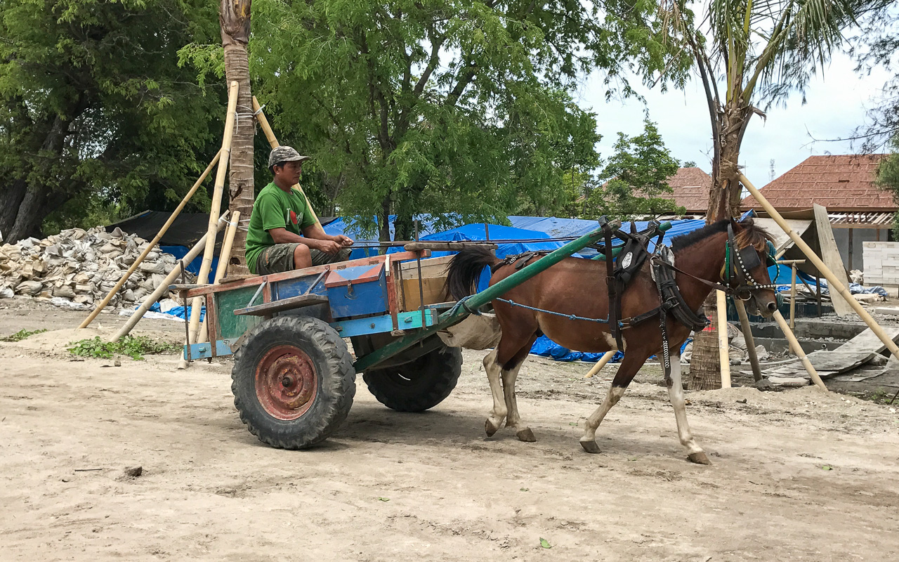 Gili Islands Gili Meno Pferdekutschen