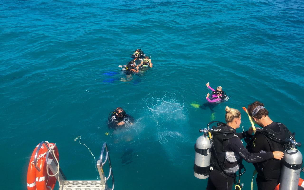 australien-ostkueste-great-barrier-reef-tauchen