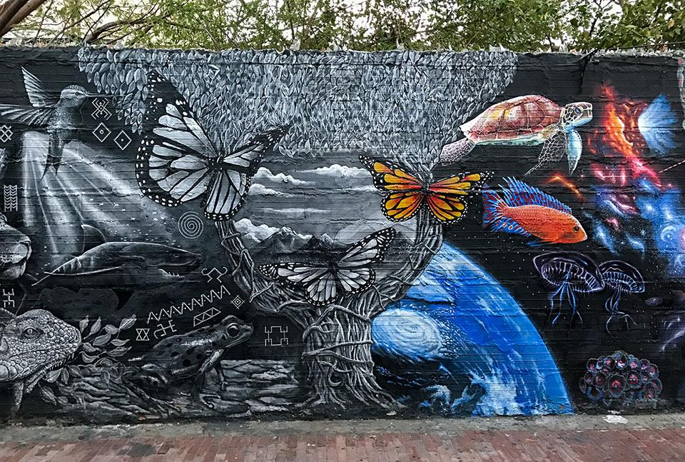 Street Art in Kolumbien - auch Santa Marta hat das zu bieten