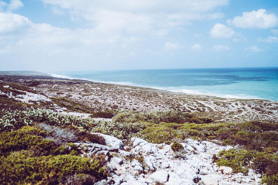 Südküste Australien: Highlights beim Roadtrip von Adelaide bis Perth 8