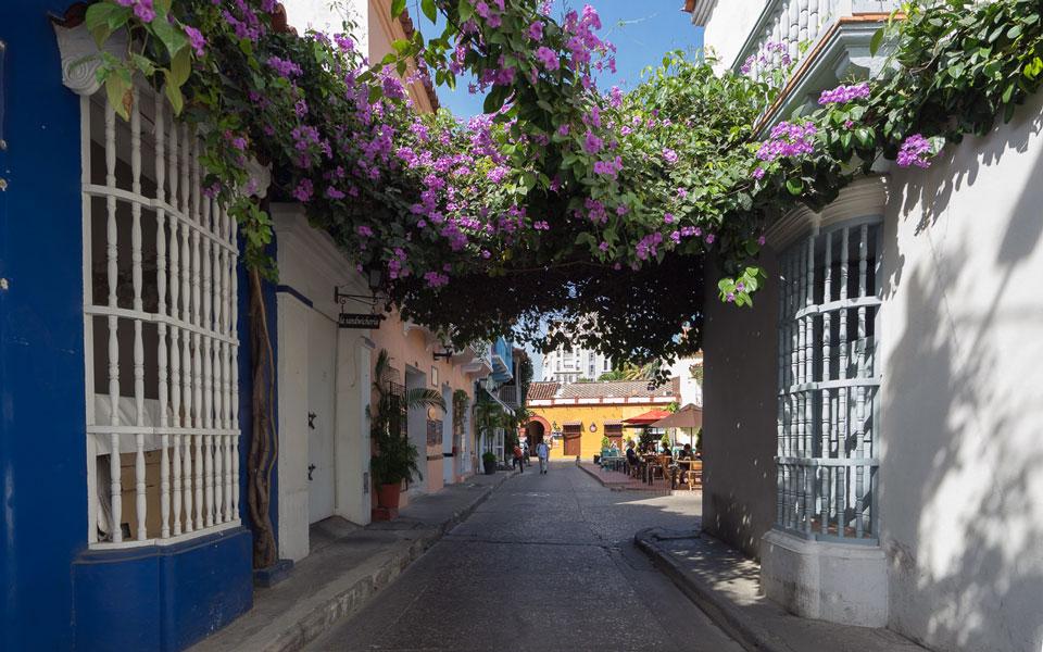 bunte-blumen-schoene-plaetze-cartagena-kolumbien