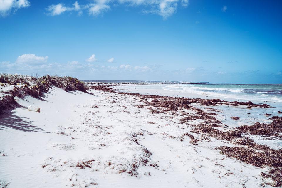 Eucla Beach Australien