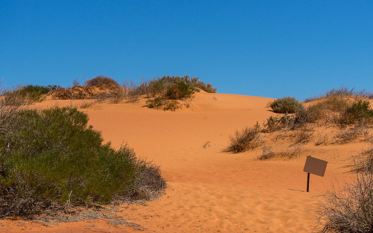 Rote Sanddünen Francois Peron NP