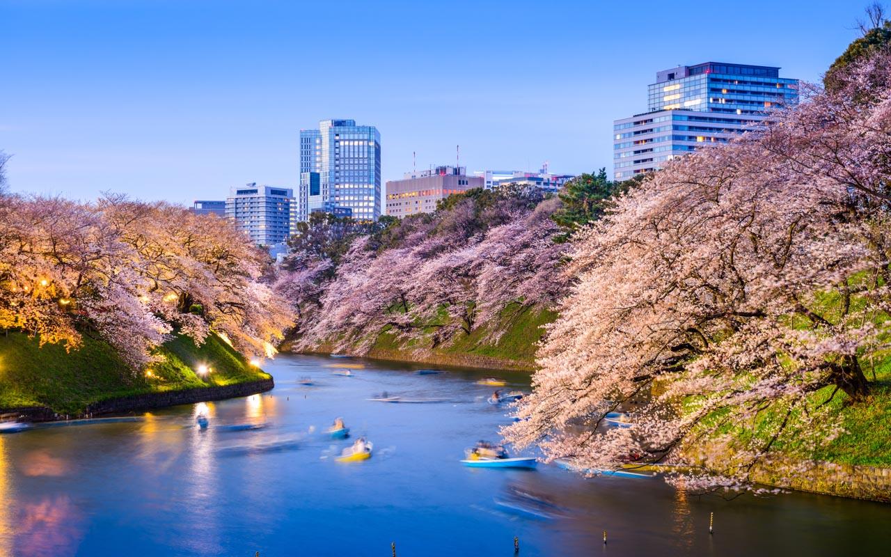 Reisetipps Urlaub im April Tokio