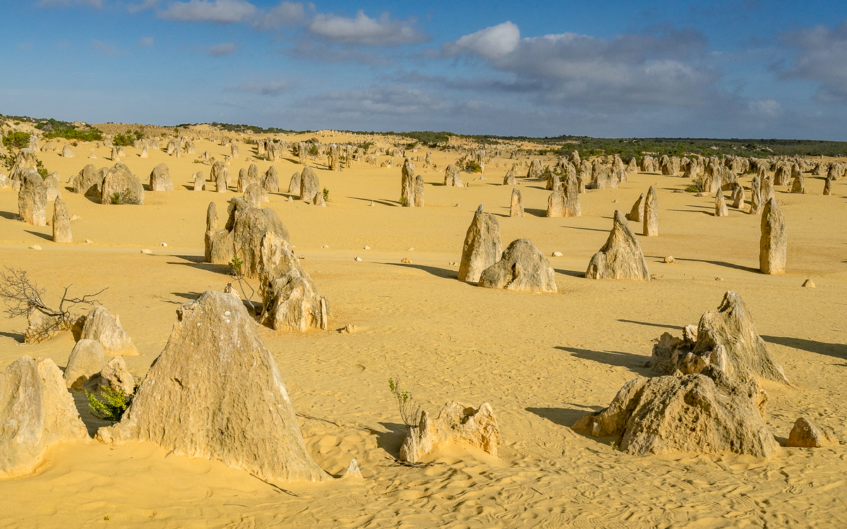 The Pinnacles Nambung NP