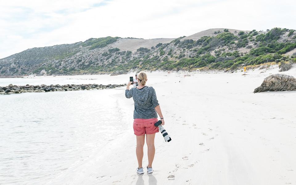 Highlights auf Kangaroo Island - das Naturparadies in Südaustralien 2