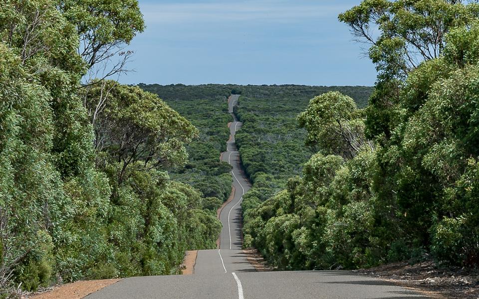 Winding Road Kangaroo Island