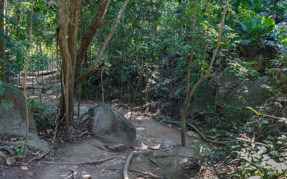 Tayrona Nationalpark | Wanderung