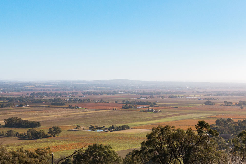 Mengler Hill Lookout Barossa Valley