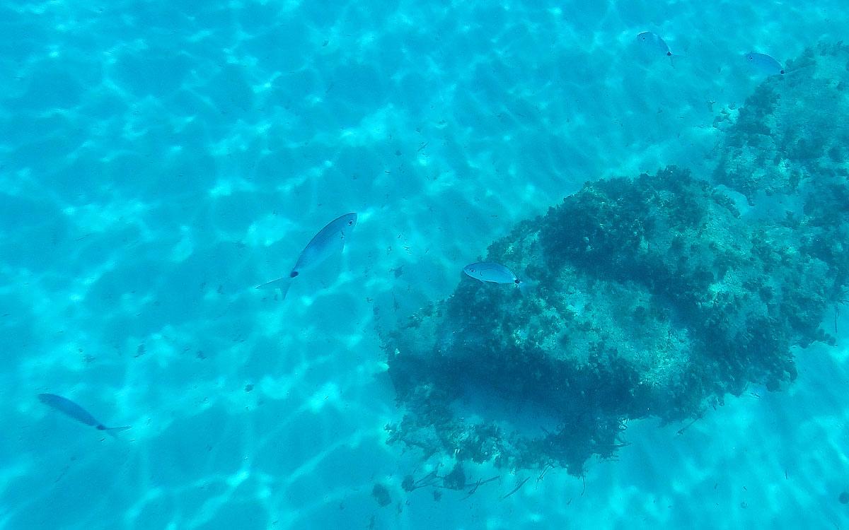 Sardinien klare Sicht im Meer