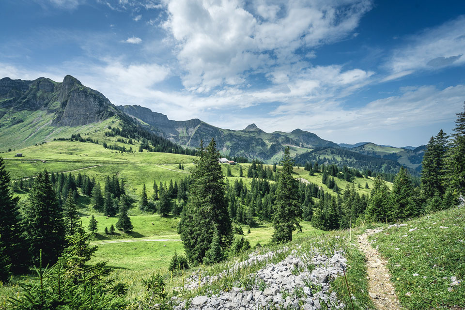bregenzerwald-im-sommer-wandern-mellau