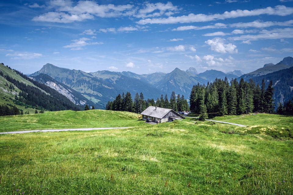 bregenzerwald-kulinarisch-wandern-alm-mellau