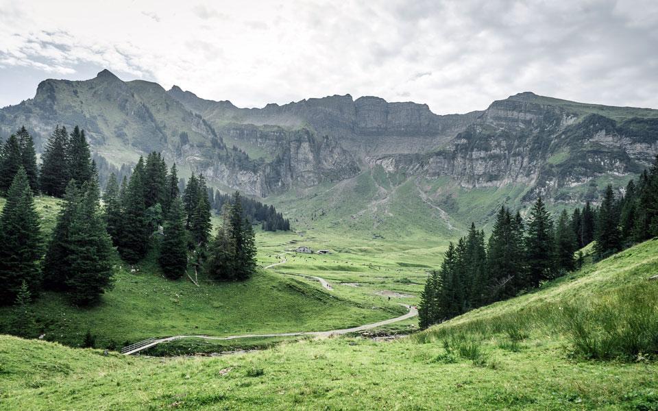 bregenzerwald-vorarlberg-wandern-sommer