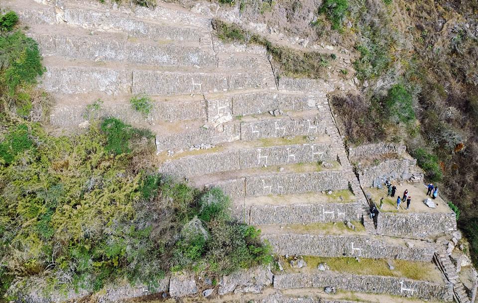 Lama Terrassen Choquequirao Luftaufnahme