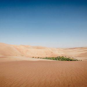 Abu Dhabi Reisetipps: Warum es sich lohnt, das größte Emirat zu besuchen 21