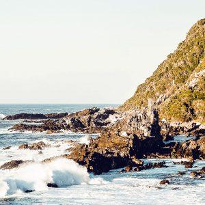 Garden Route Südafrika – Tipps, Highlights und Route für euren Roadtrip 10