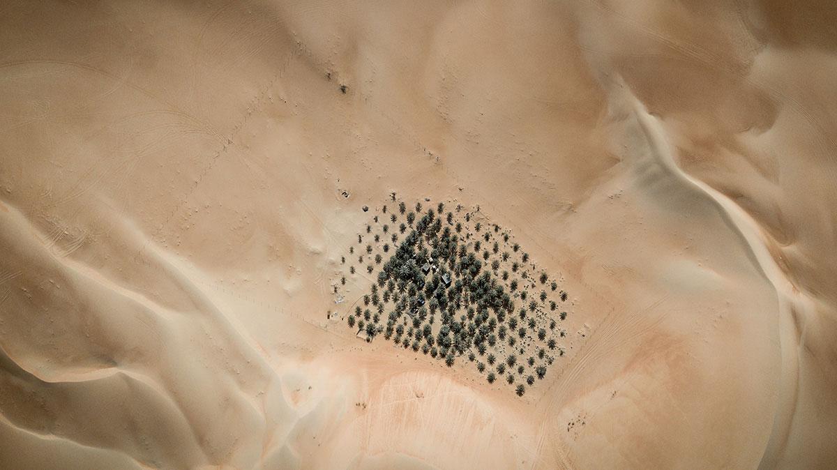 Oase Liwa Rub al-Khali Wüste Abu Dhabi