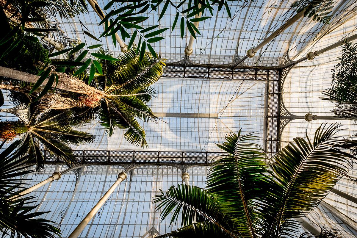 Glashaus Royal Botanic Garden Edinburgh