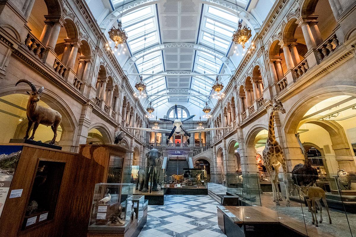 glasgow-kelvingrove-museum