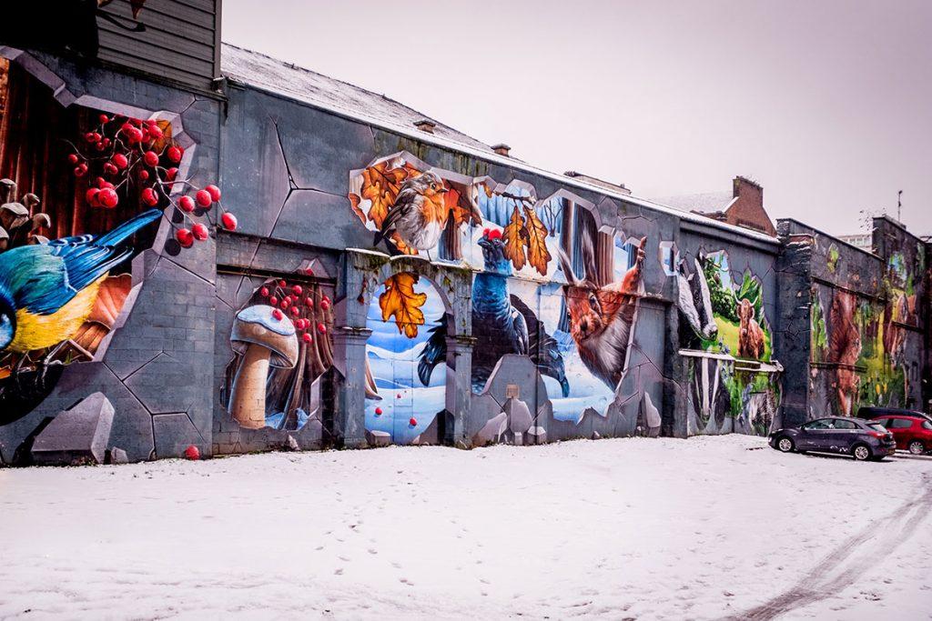 glasgow-street-art-ingram-street-smug2